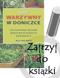 Ogród Warzywny W Doniczce Agroświat Internetowa Księgarnia